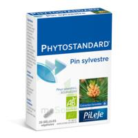 Pileje Phytostandard - Pin Sylvestre 20 Gélules Végétales à Bordeaux