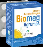 Lehning Biomag Comprimés à Croquer Agrumes B/90 à Bordeaux