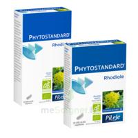 Pileje Phytostandard - Rhodiole 20 Gélules Végétales à Bordeaux