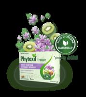 Phytoxil Transit Comprimés B/20 à Bordeaux