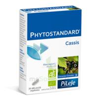 Pileje Phytostandard - Cassis 20 Gélules Végétales à Bordeaux