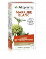 Arkogélules Marrube blanc Gélules Fl/45 à Bordeaux