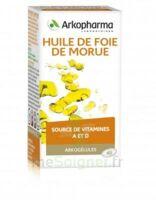 Arkogélules Huile De Foie De Morue Caps Fl/60 à Bordeaux