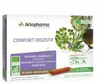 Arkofluide Bio Ultraextract Solution Buvable Confort Digestif 20 Ampoules/10ml à Bordeaux