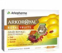 Arkoroyal Royal'fruits Gelée Royale Goji Grenade Baobab Solution Buvable 20 Ampoules/10ml à Bordeaux