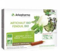 Arkofluide Bio Ultraextract Artichaut Fenouil Solution buvable 20 Ampoules/10ml à Bordeaux