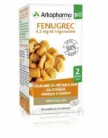 Arkogélules Fenugrec Bio Gélules Fl/40 à Bordeaux