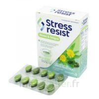 Stress Resist Comprimés Stress & Fatigue B/30 à Bordeaux