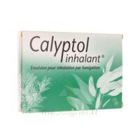 CALYPTOL INHALANT, émulsion pour inhalation par fumigation à Bordeaux