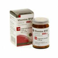 Vitamine B12 Gerda 250 Microgrammes, Comprimé Sécable à Bordeaux
