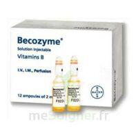 Becozyme, Solution Injectable En Ampoule à Bordeaux