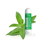 Puressentiel Respiratoire Inhaleur Respiratoire aux 19 Huiles Essentielles - 1 ml à Bordeaux