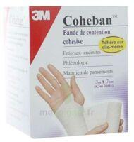 Coheban, Blanc 3 M X 7 Cm à Bordeaux