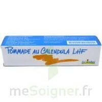 Calendula Lhf Pom T/20g à Bordeaux