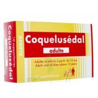 COQUELUSEDAL ADULTES, suppositoire à Bordeaux