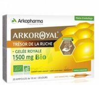 Arkoroyal Gelée royale bio 1500 mg Solution buvable 20 Ampoules/10ml à Bordeaux