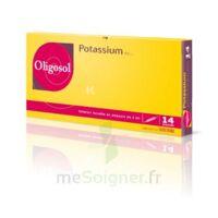 Oligosol Potassium Solution Buvable En Ampoule 14amp/2ml à Bordeaux