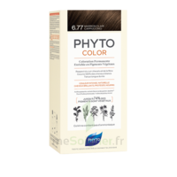 Phytocolor Kit coloration permanente 6.77 Marron clair cappuccino à Bordeaux