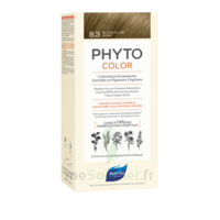 Phytocolor Kit coloration permanente 8.3 Blond clair doré à Bordeaux