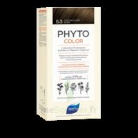 Phytocolor Kit Coloration Permanente 5.3 Châtain Clair Doré à Bordeaux