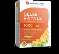 Forte Pharma Gelée Royale 1000 Mg Solution Buvable 20 Ampoules/10ml à Bordeaux