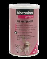 Biocanina Lait poudre maternisé B/400g à Bordeaux