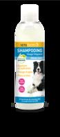 Vetoform Shampoing Usage Fréquent Spécial Chien 200 Ml à Bordeaux