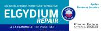 Elgydium Repair Pansoral Repair 15ml à Bordeaux