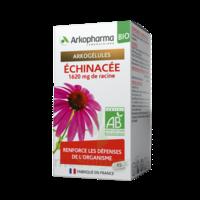Arkogelules Echinacée Bio Gélules Fl/45 à Bordeaux