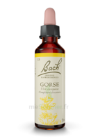 Fleurs de Bach® Original Gorse - 20 ml à Bordeaux