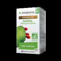 Arkogelules Nopal Bio GÉl Fl/45 à Bordeaux