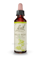 Fleurs De Bach® Original Wild Rose - 20 Ml à Bordeaux