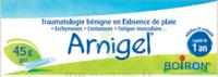 Boiron Arnigel Gel T/45g à Bordeaux