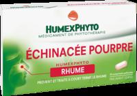 Echinacee Pourpre Humexphyto Cpr Pell Plq/20 à Bordeaux